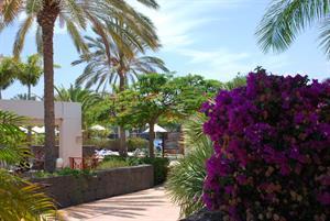 - Hotel Costa Calero