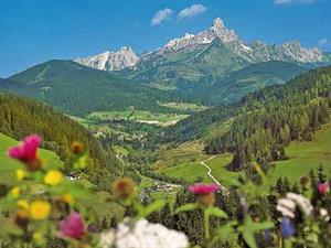 Oostenrijk, Salzburgerland, Filzmoos