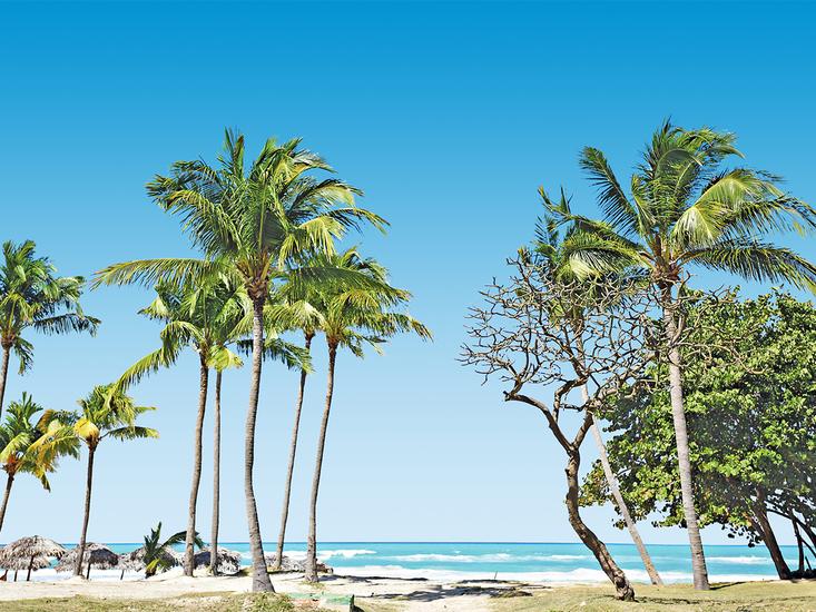 vakantie Starfish Cuatro Palmas_11