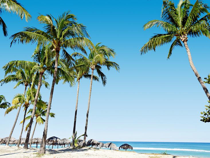 vakantie Starfish Cuatro Palmas_10