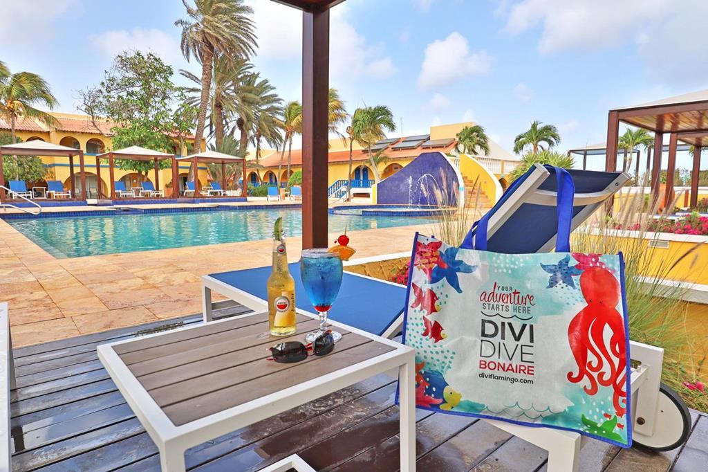 Divi Flamingo Beach Resort en Casino