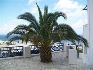 Apartotel Aegean View